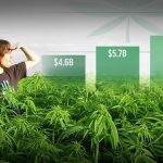 cannabis-industry-will-worth-50-billion-2026-1-2